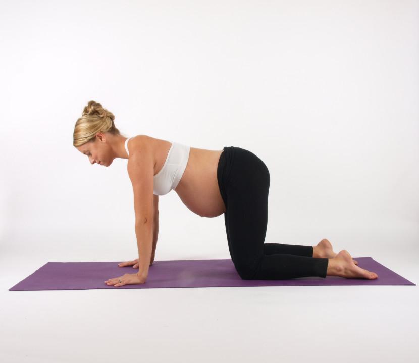 Amy Griffith's Prenatal Yoga - Photo Credit Art Becker